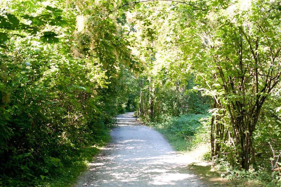 Whatcom Falls Park Trails / Bellingham Adventures / hellorigby!