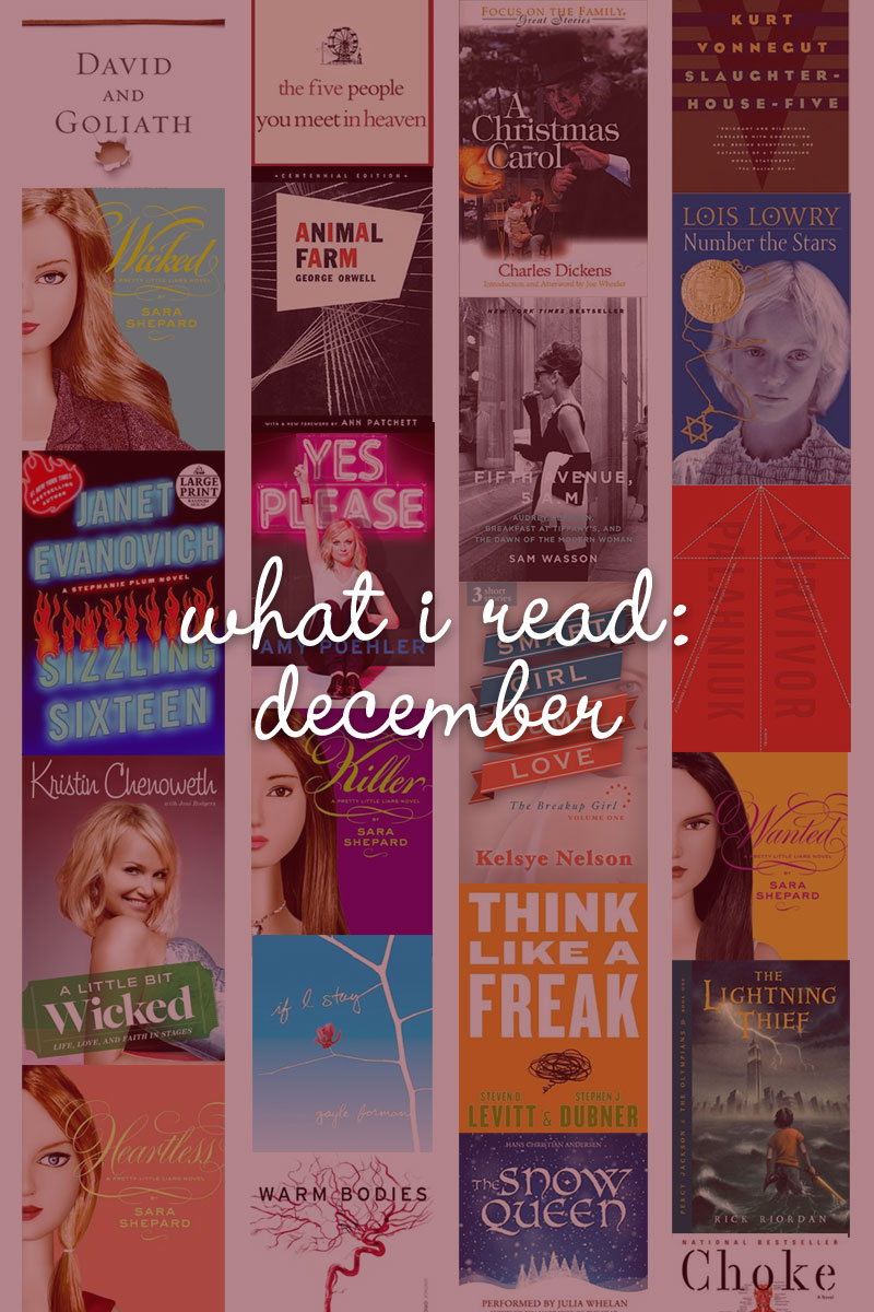 What I Read: December / hellorigby!