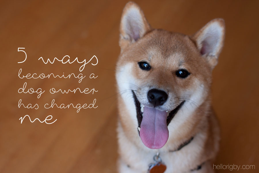 5 Ways Becoming a Dog Owner has Changed Me / hellorigby.com