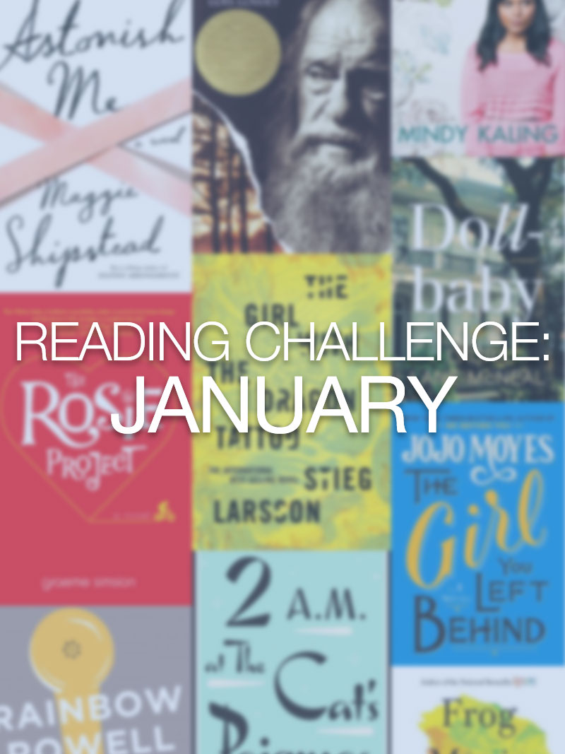Reading Challenge: January Update / hellorigby seattle lifestyle and fashion blog