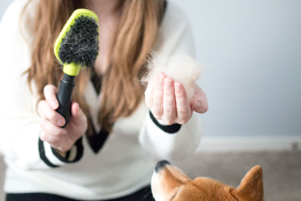 FURminator Dual Brush for Dogs from Chewy Review / hellorigby seattle lifestyle & pet blog