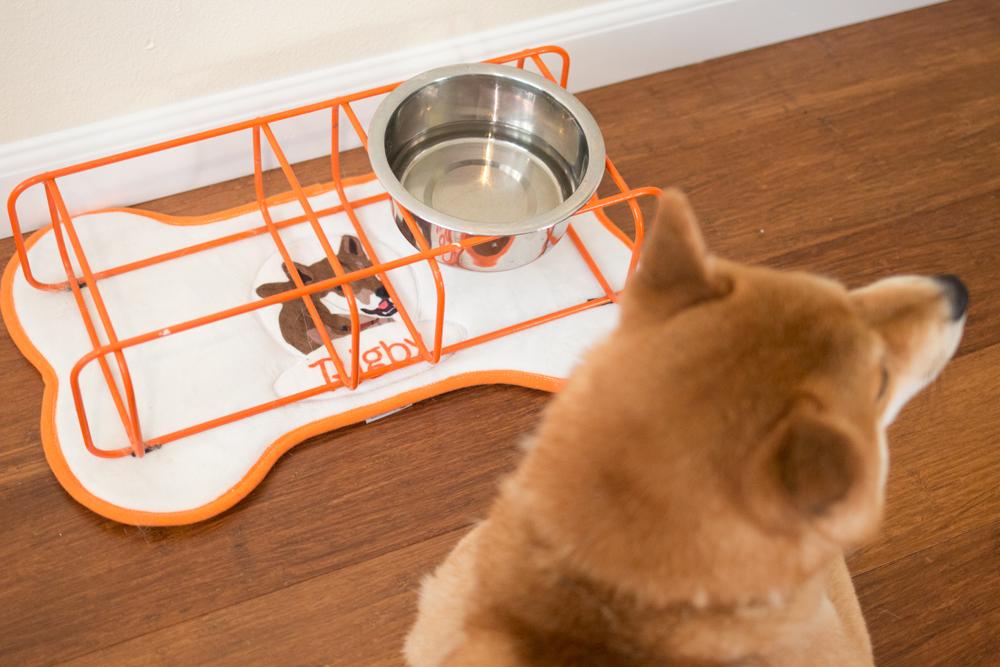 Rigby's Favorites: Pride Bites Custom Placemat // hellorigby seattle pet blog