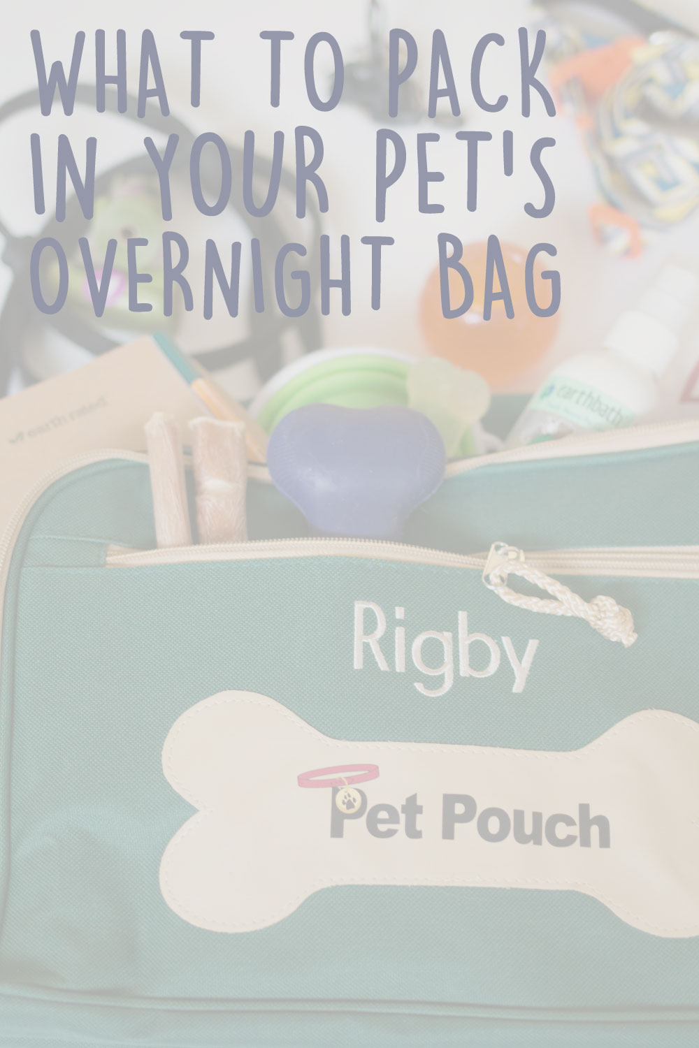 How to Pack a Travel Bag for Your Dog & Packing Checklist // hellorigby seattle lifestyle blog