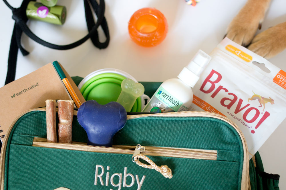 What to Pack in Your Dog's Travel Bag // hellorigby seattle lifestyle blog