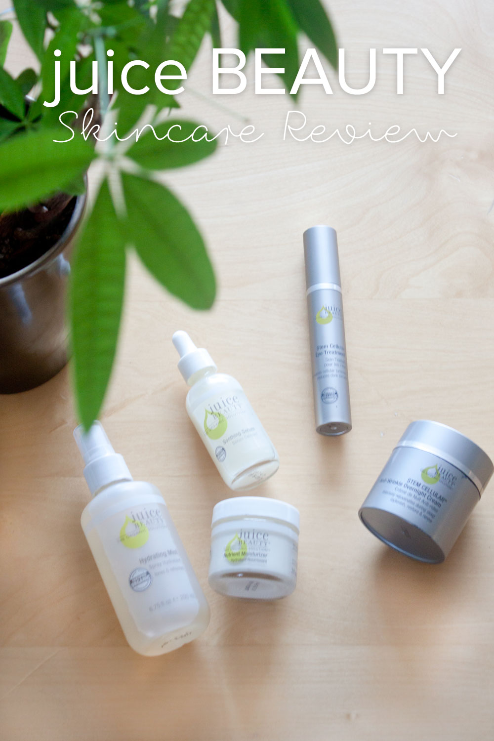 Juice Beauty Review: Skincare for Dry Skin // hellorigby seattle beauty blog
