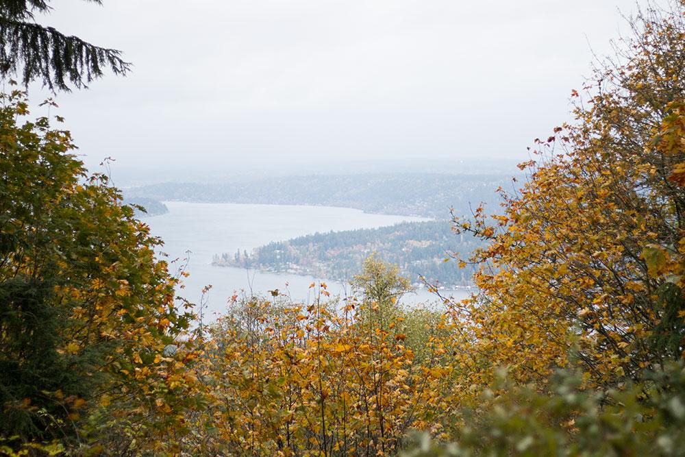 Million Dollar View at Anti-Aircraft Peak at Cougar Mountain, Washington // hellorigby seattle travel blog