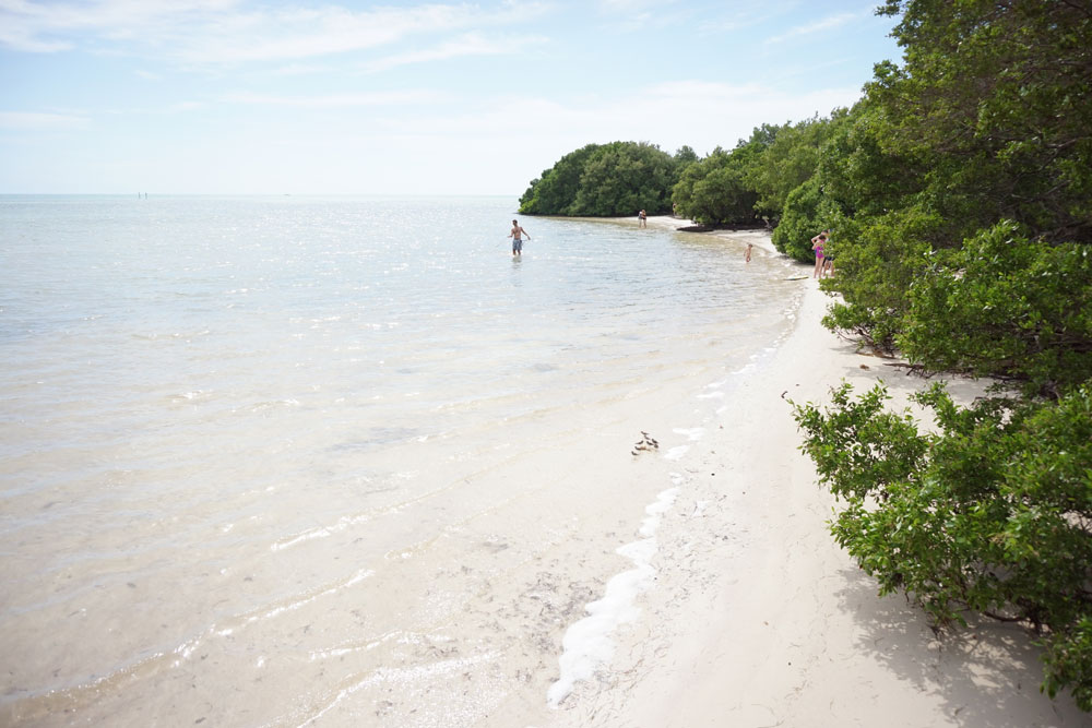 View from Anne's Beach in Islamorada, Florida // hellorigby.com seattle travel blog