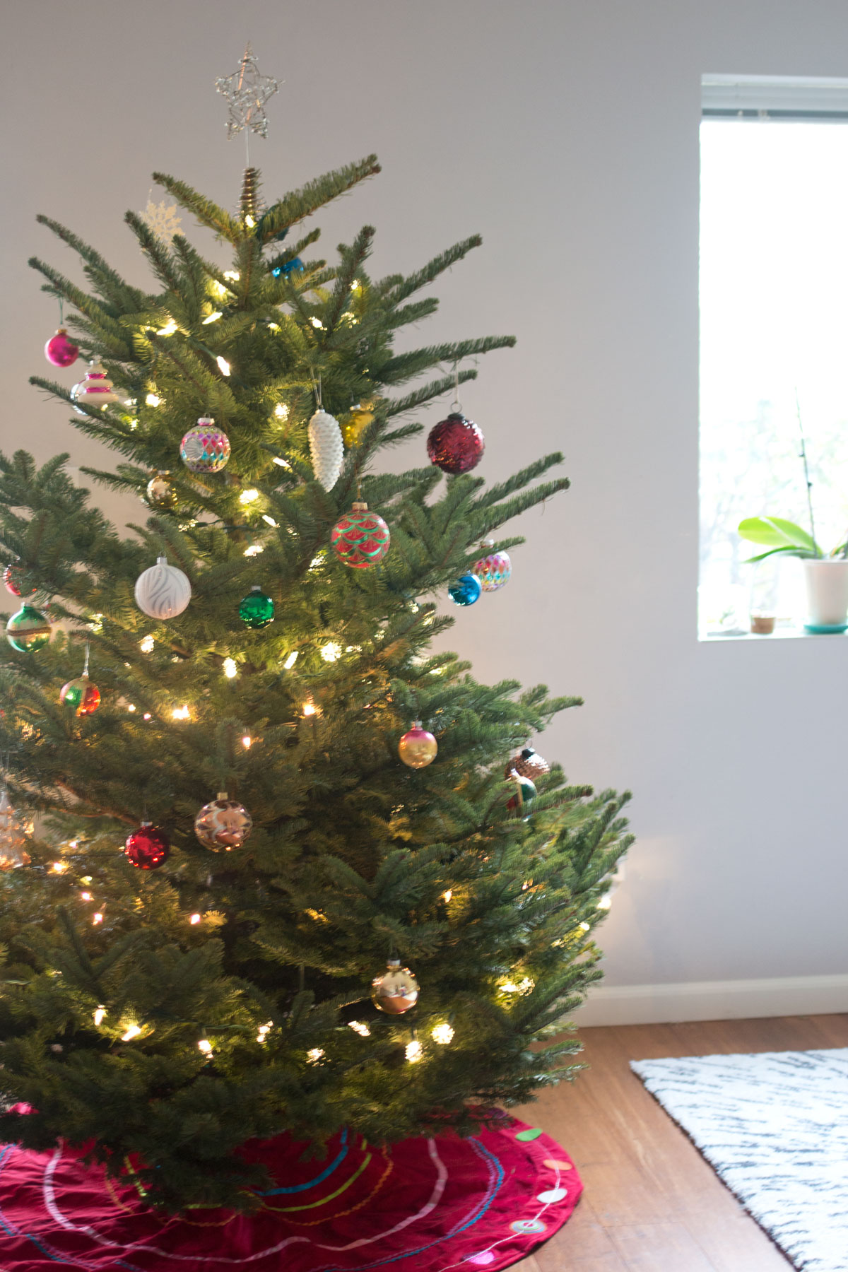 Christmas Tree from Swanson's Nursery: Pick the Perfect Tree Program // hellorigby seattle lifestyle & home decor blog