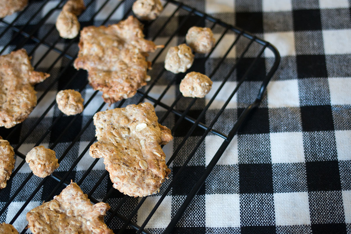 How to Make Homemade Dog Treats // hellorigby.com seattle recipe & food blog