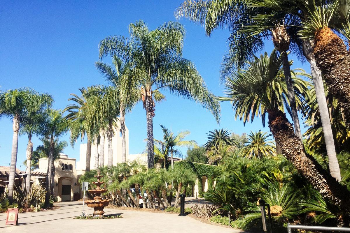 Hyatt Regency Newport Beach Hotel & Resort // Hello Rigby Seattle Fashion & Lifestyle Blog