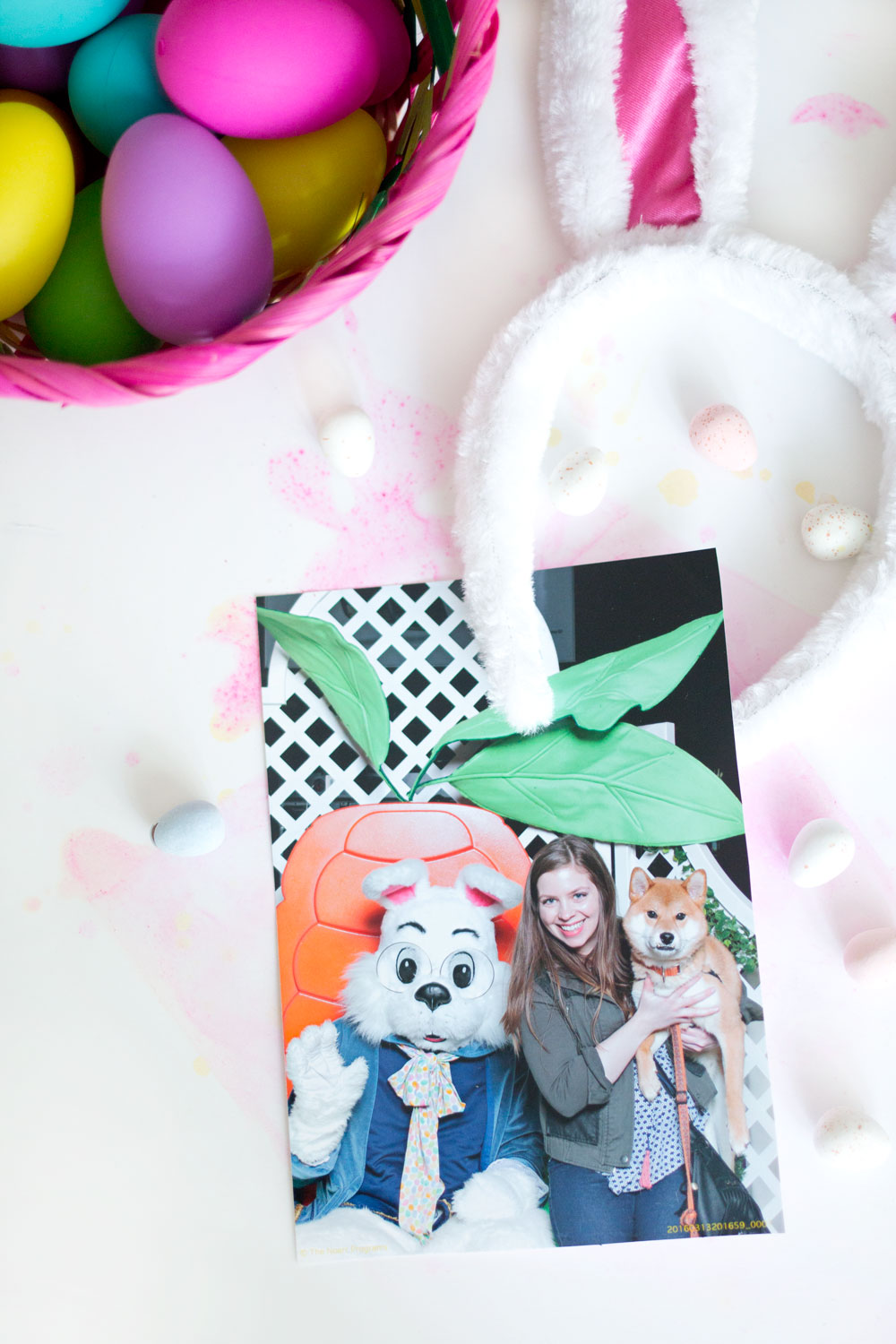 Shiba Inu Photos with Easter Bunny // Hello Rigby Seattle Pet & Lifestyle Blog