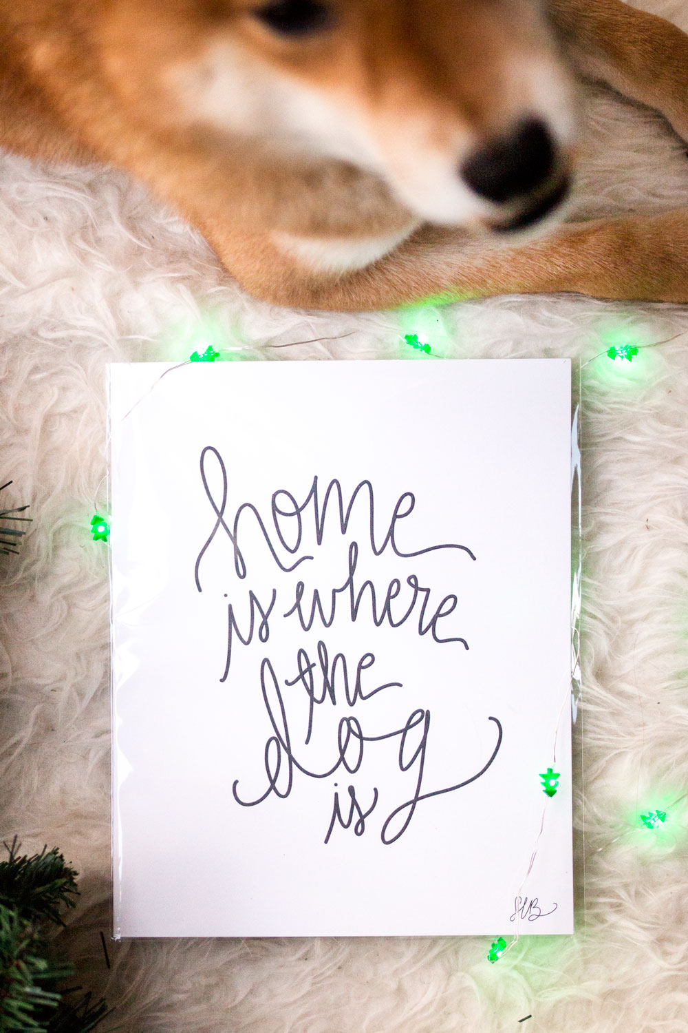 Signet Sealed Home is Where the Dog is Hand Lettered Print // Hello Rigby Seattle Lifestyle Blog