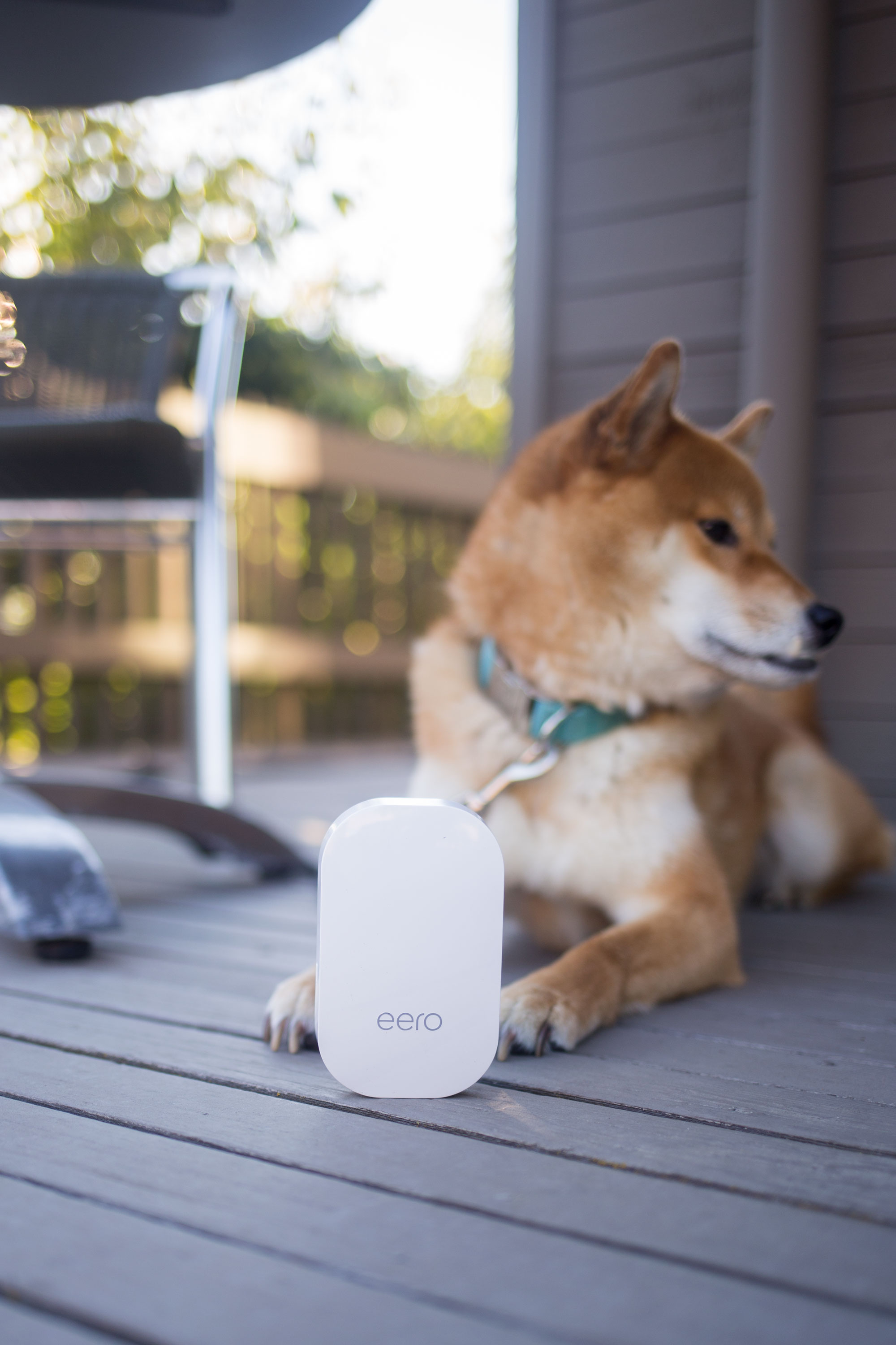 The Easiest Solution for Home WiFi // eero Review // Hello Rigby Seattle Lifestyle Blog